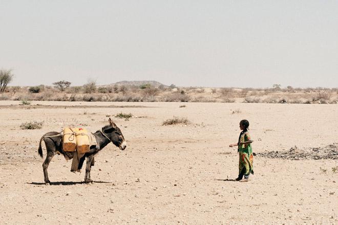 Foto: Esel und Kind in Wüste