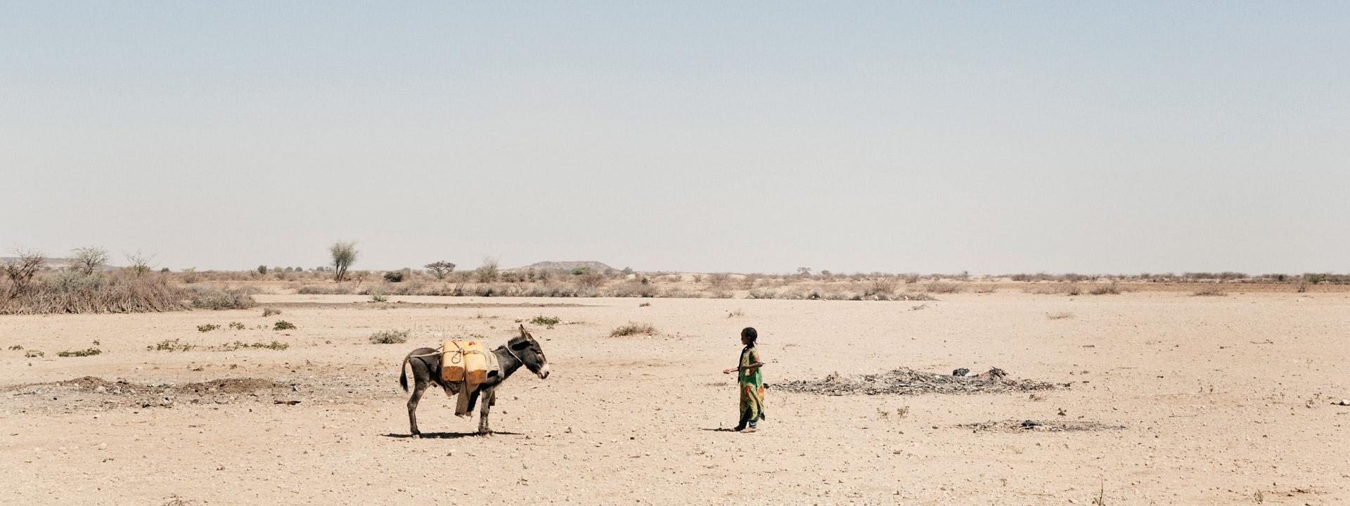 Foto: Esel und Kind in der Wüste