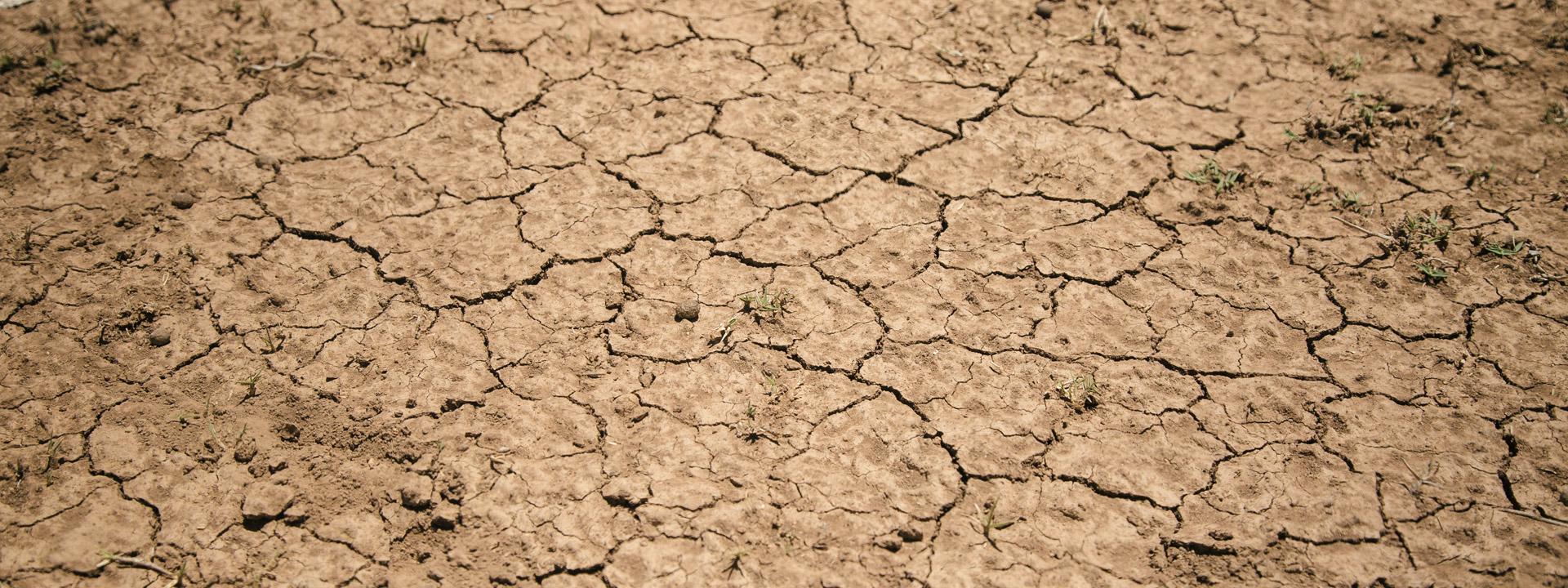 Foto: ausgedörrter Boden