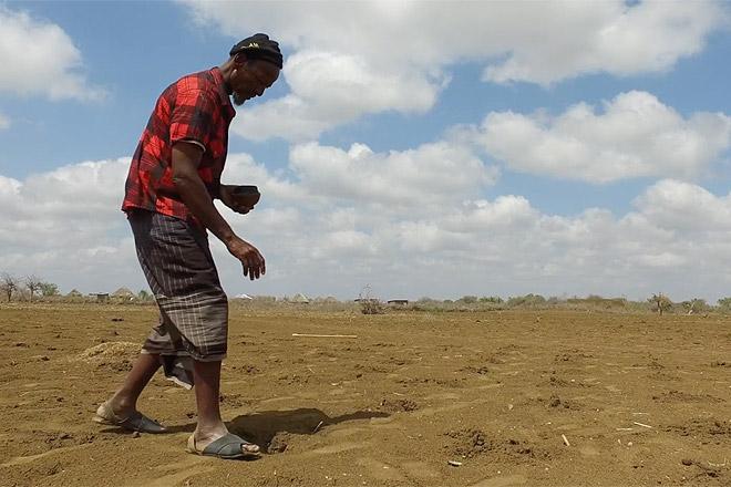 Ein somalischer bauer sät Getreide