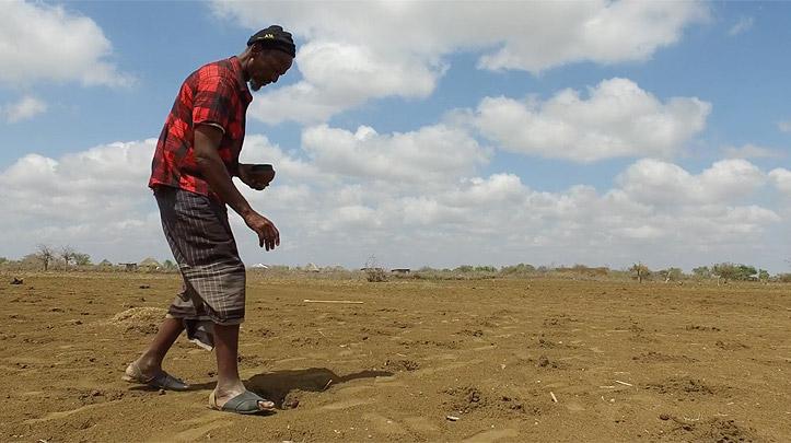 Bauer Isaak Gaas aus Somalia sät Getreide