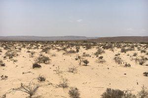 Foto: Dürres Land in Somaliland
