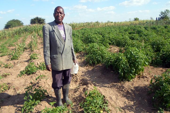 Foto: ein mosambikanischer Mann vor einem Kartoffelfeld
