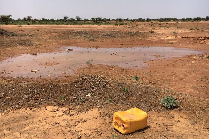 Foto: Wasserpfütze in Somaliland