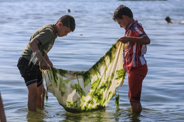 Foto: Jungen im Meer halten ein algenbedecktes Tuch