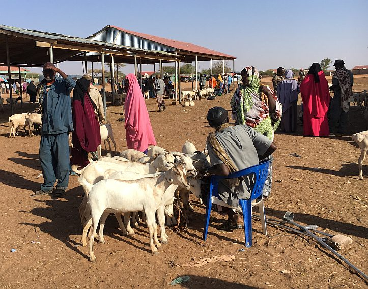 Markt in Burao