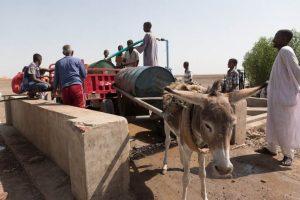 Eselkarren für den Wassertransport