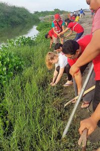Youths planting mangroves on the Philippines