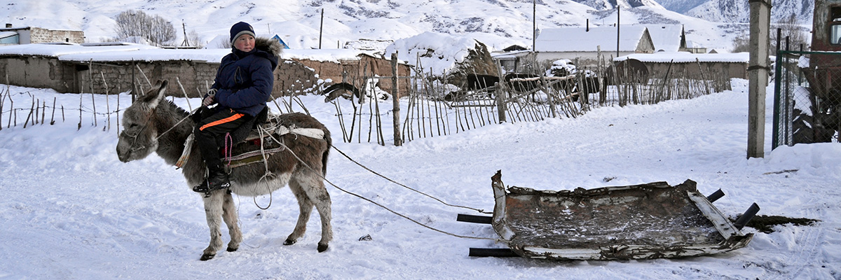Kirgisischer Junge auf Esel mit improvisiertem Schlitten