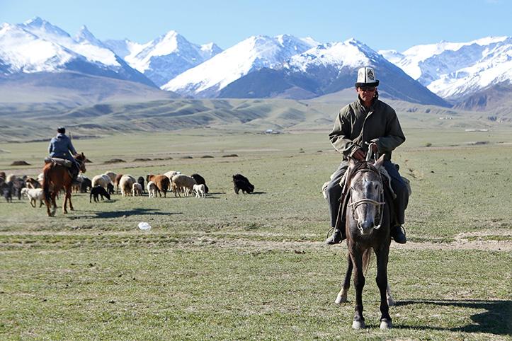Foto: Landschaft in Kirgistan mit Schafen und Reitern